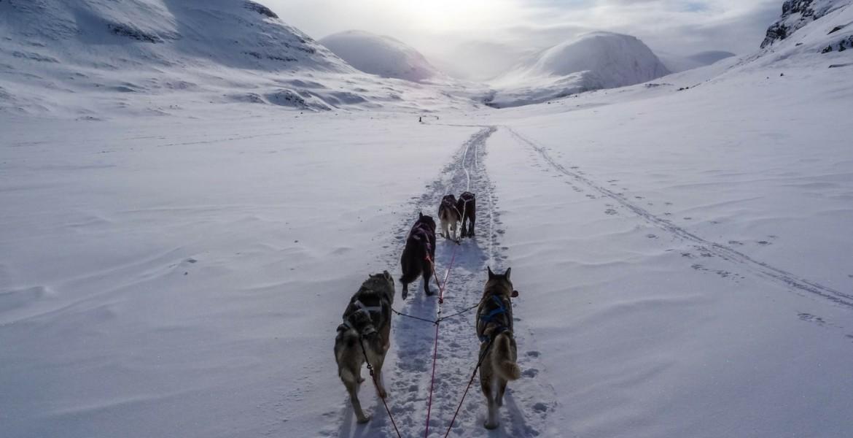 Actividades de invierno en el Valle de Arán