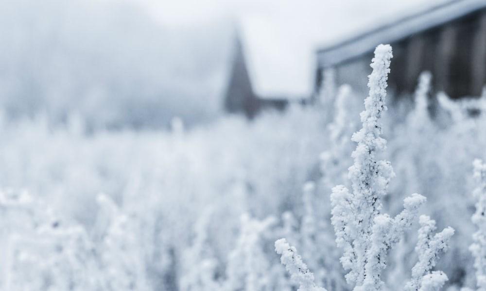 Week-end à Baqueira – Journée mondiale de la neige