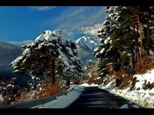 Paisaje de carretera nevado.