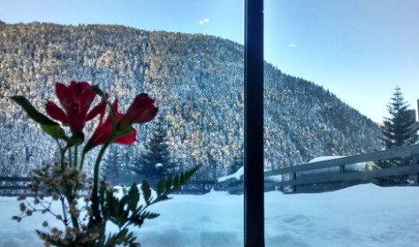 Salón restaurante con vistas a la montaña